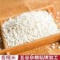 圆糯米 白糯米 五谷杂粮糯米包 粽子糕点原料 营养江米 百姓粮油